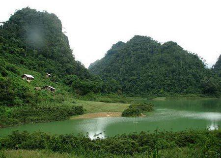 Có thể tìm được Dây Thần Dược VINAGRA bên hồ nước này.